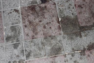 Prenses'in öldürüldüğü kaldırıma vardığımızda kan izleri hala yerdeydi.